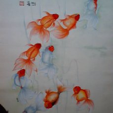 9goldfish