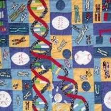 Chromosome quilt 1